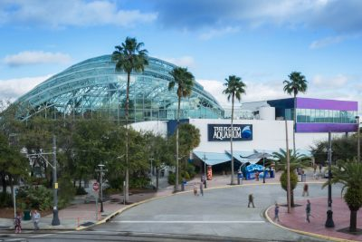 Donate to Goodwill and get $10 off of Florida Aquarium Admission Tickets