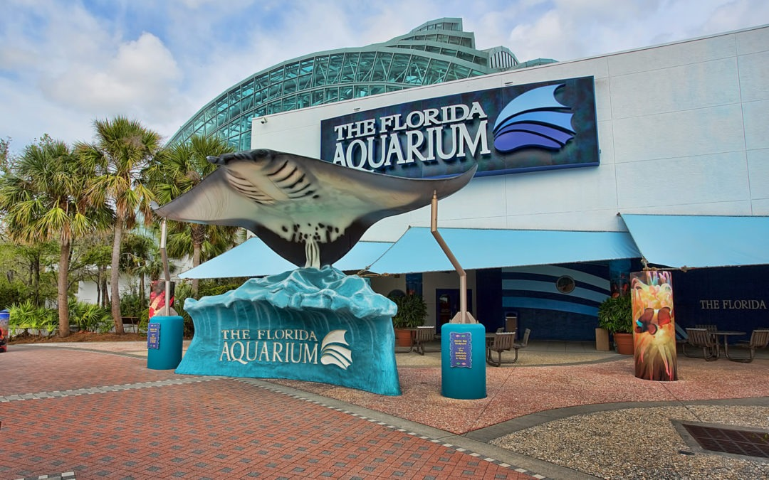 Free Admission to Florida Aquarium for Federal Workers Affected by Shutdown