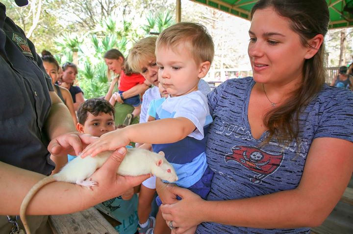 Toddler Tuesdays at ZooTampa at Lowry Park
