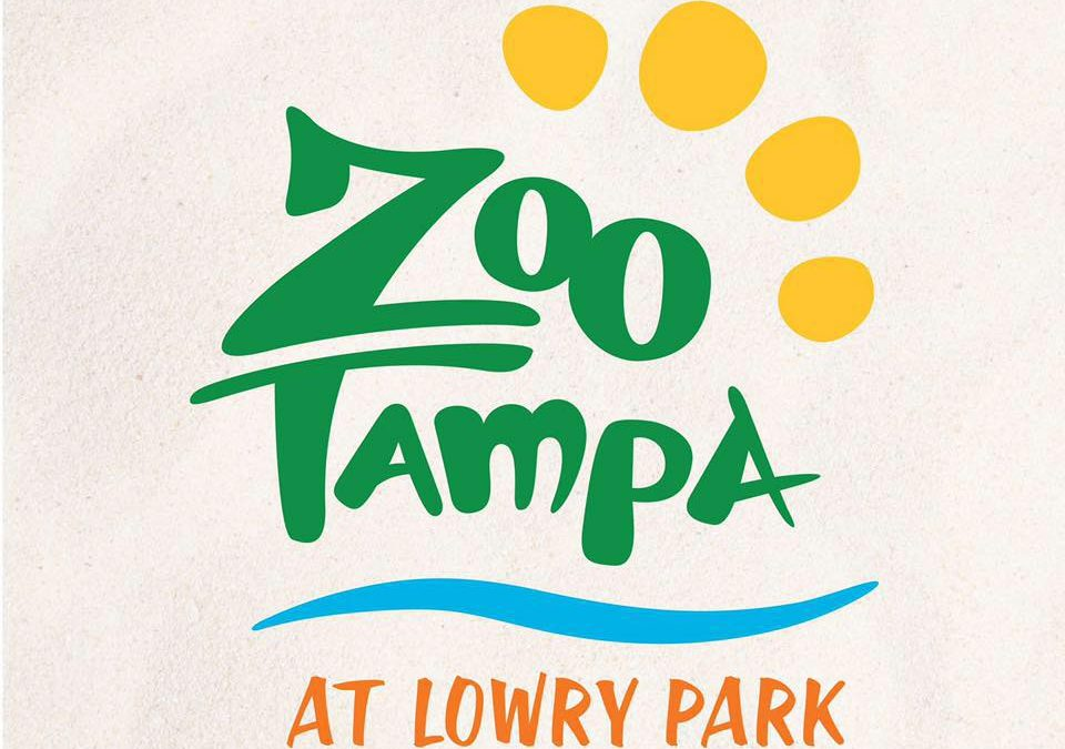Splash Pad at ZooTampa at Lowry Park Zoo