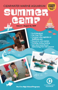 Clearwater Marine Aquarium Summer Camps with Winter & Hope