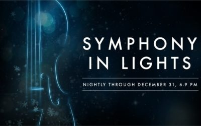 Symphony in Lights at The Shops at Wiregrass
