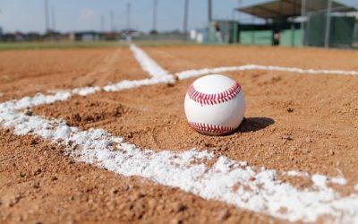 Florida Baseball Spring Training Season – NY Yankees, Tampa Bay Rays & More