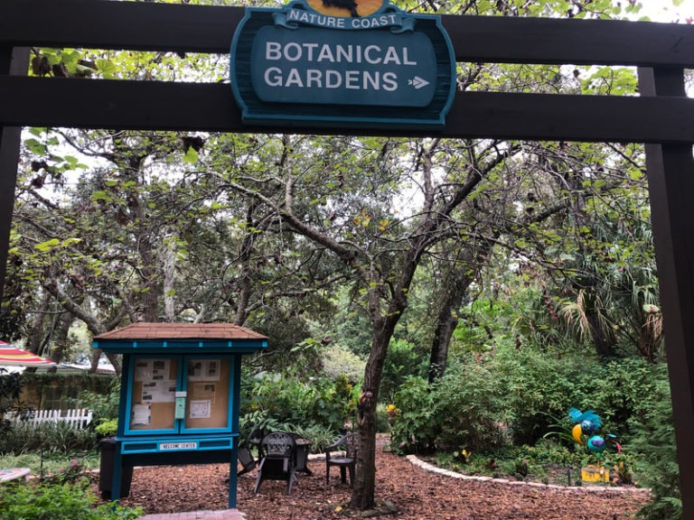 Botanical Garden 768x576