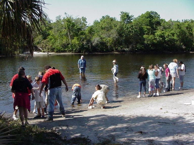 camp bayou 1 768x576