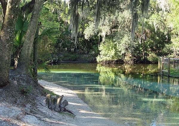 lithia spring alafia river
